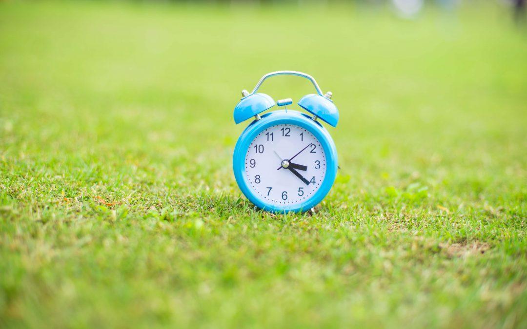 Las edades del aprendizaje: todo tiene su tiempo